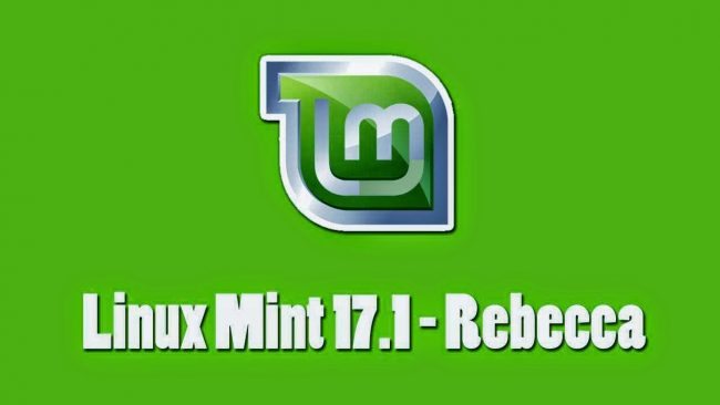 instalare linux mint